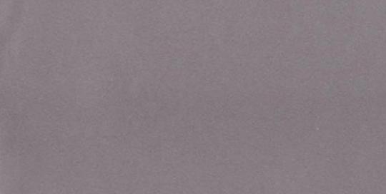 Nr.9 Sidabrinė (tekstūra)