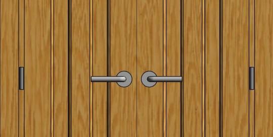 dviveres durys 2(1)