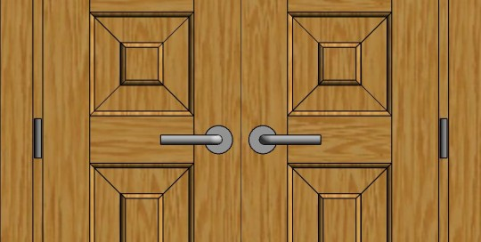 dviveres durys 3(1)