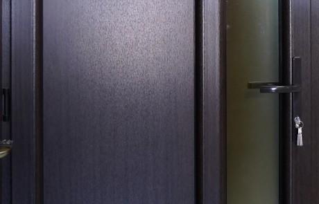 1. Plastikines durys, Lange, lauko durys, sarvuotos lauko durys1